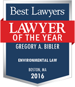 logo for Lawyer of the Year in Environmental Law 2016