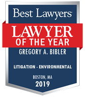 Logo for Lawyer of the Year 2019-best-lawyers-litigation-environmental
